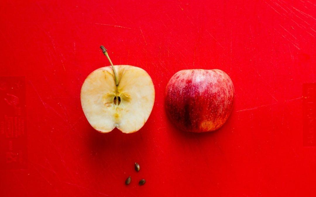 Le pépin de pomme en médiation familiale